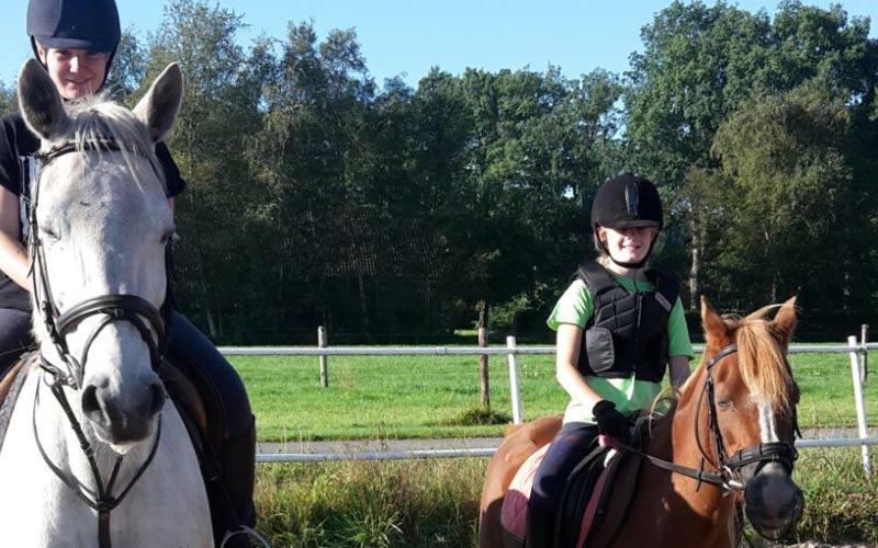 Stal Zwartschaap Brushing Horse